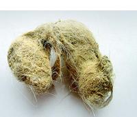 Les boules de poils peuvent faire que votre chat s'étouffe
