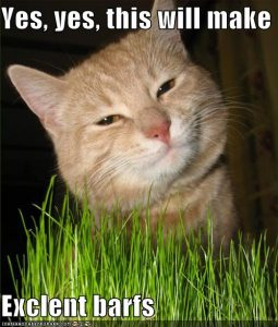 funny-pictures-yes-the-grass-will-make-excellent-barfs