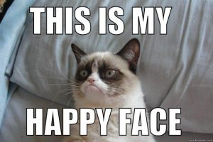 Is this cat happy? Grumpy cat