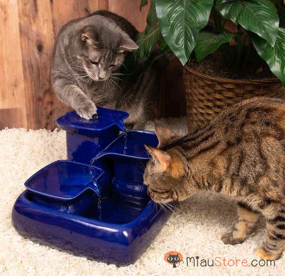 The Miaustore Ceramic Cat Fountain